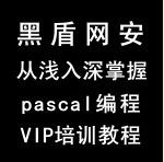 黑盾网安从浅入深掌握pascal编程技术VIP培训教程