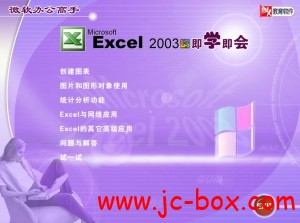 《Excel 2003即学即会视频教学光盘》
