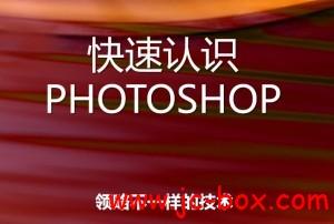 IT9网络学院PhotoShop CS4系列VIP教程